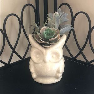 Other - Faux succulent piece